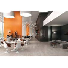 ATLAS CONCORDE Ewall Orange Stripes
